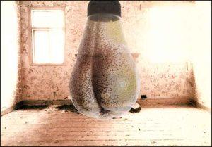 pearbulb-room13