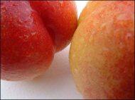 nectarines13